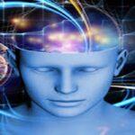Cara Memaksimalkan Kinerja Otak Dan Kecerdasan Anda