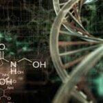 Terapi Penyembuhan dengan Kecerdasan Bioenergi