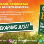 Buku Kecerdasan Bioenergi Solusi Masalah Hidup Anda