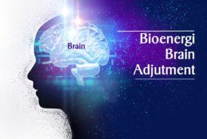 Bioenergi Brain Adjustment