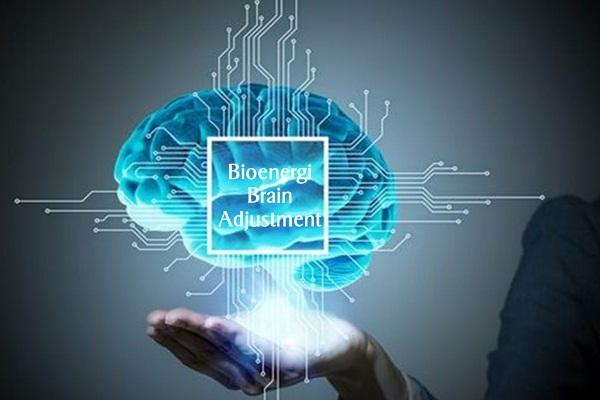 Bioenergi Brain Adjustment - bioenergi.co.id