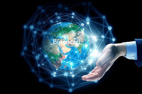 Bioenergi Sebagai Praktek Spiritual Dalam Hidup - bioenegri.co.id