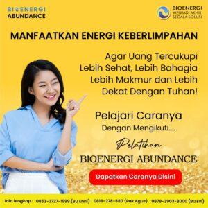 https://bioenergiabundance.com/